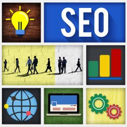 Custom Seo Plan Miami