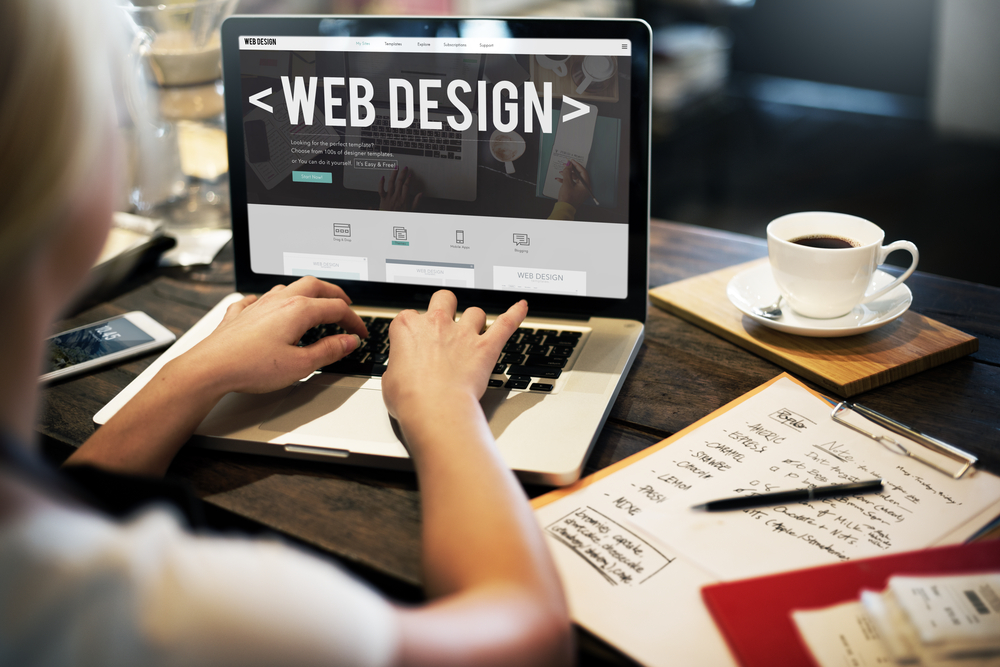 Professional Web Design Florida