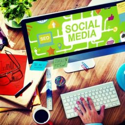 Social Media Marketing Consultant