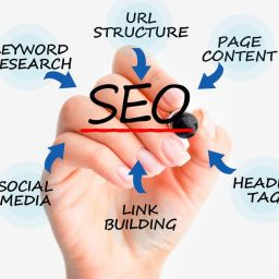 Top SEO Packages