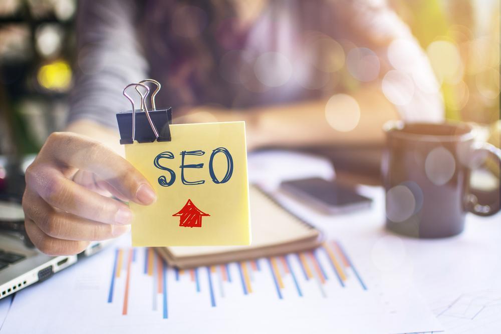 Website Search Optimization