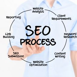 seo consultant in miami